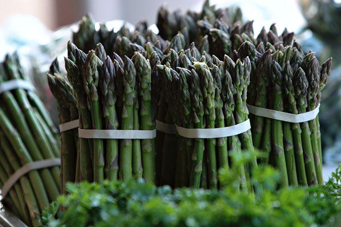 Asparagus_m.jpg