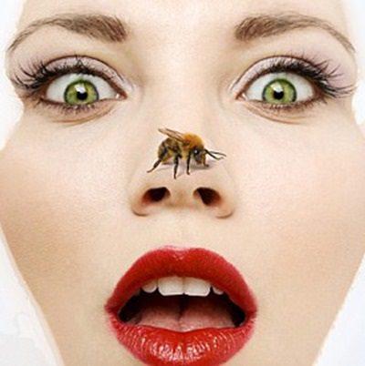 El veneno de abeja o la apitoxina para una piel joven y cuidada